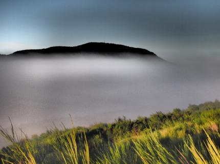 the mist 016-bl