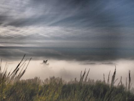 the mist 018-bl