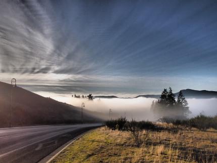 the mist 022-bl