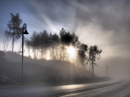 the mist 025-bl
