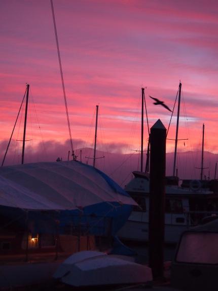 cb sunrise [BL]