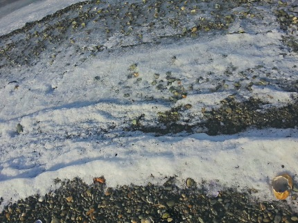 cowichan bay ice 2014-02-08 13.20.29[BL]