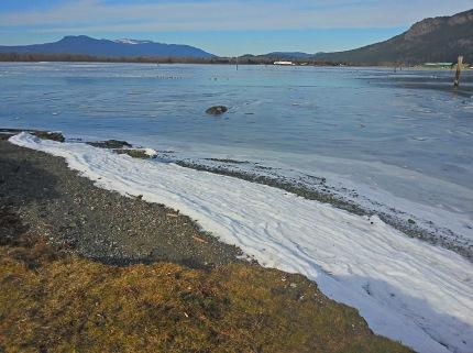cowichan bay ice 2014-02-08 13.22.26[BL]