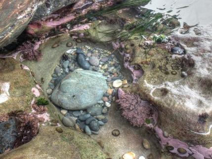sombrio tidal pool [BL]