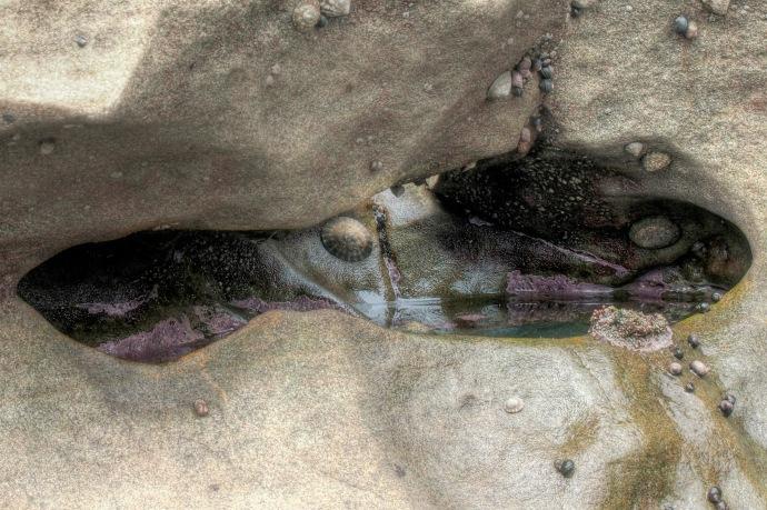 sombrio tidal pool