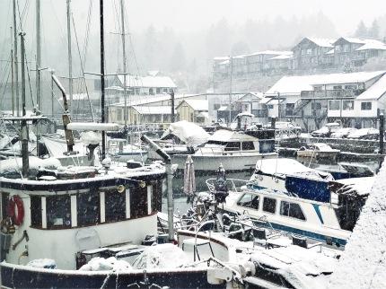 Winter hits the Bay [fl] (1)